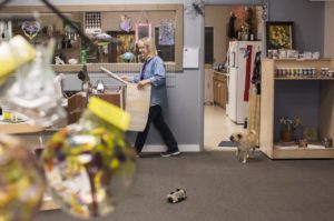 The studio's dog Bruno follows artist Pam Hatton through the shop as she works.