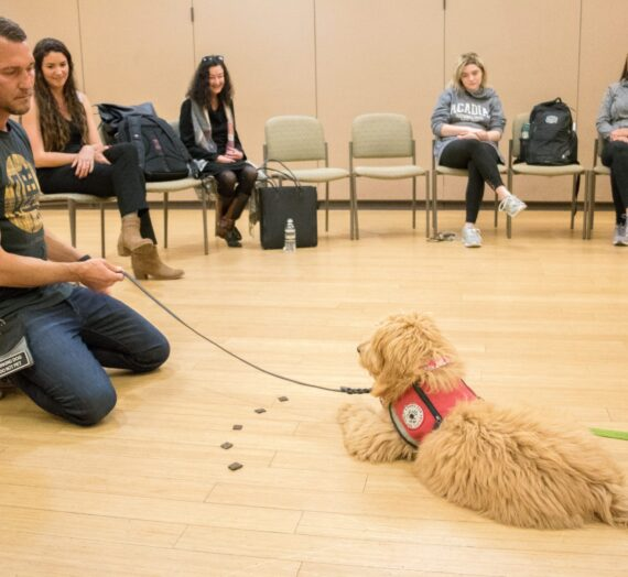 Lucky Dog show host teaches trainers and service dogs